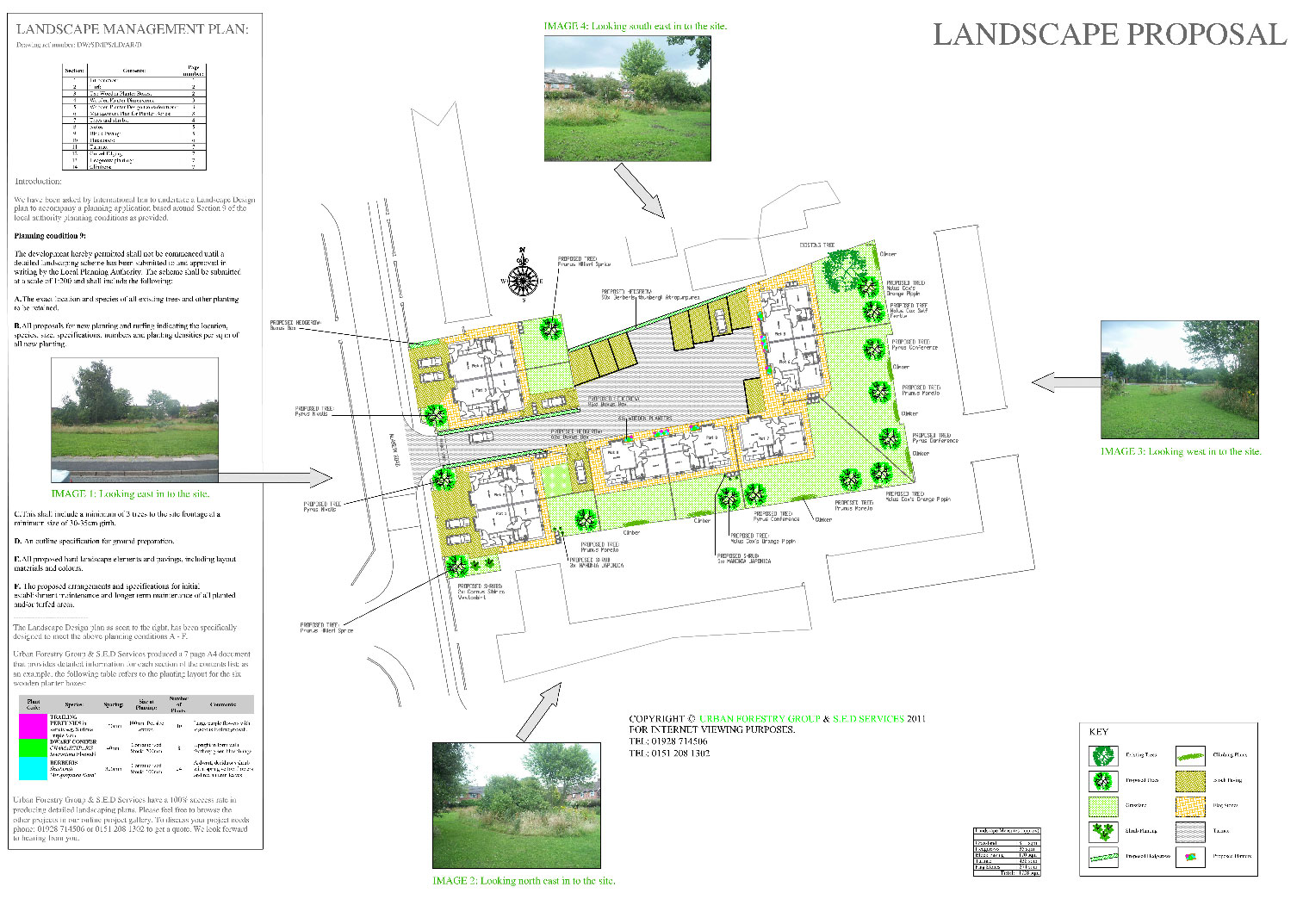 Landscaping Client Project | Urban Forestry