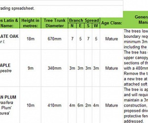 Tree survey BS-5837-2012 spreadsheet